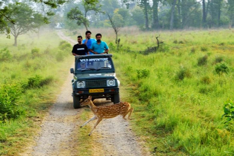 INDIRA GANDHI WILDLIFE SANCTUARY